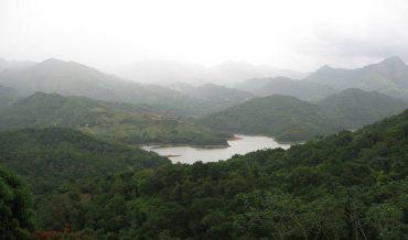 Suelo y vegetación del Caribe