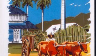 Caguas: Central Santa Juana