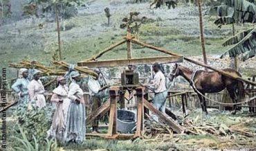 La industria del azúcar en el siglo XVI