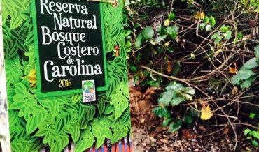 Breve historia ambiental de Puerto Rico