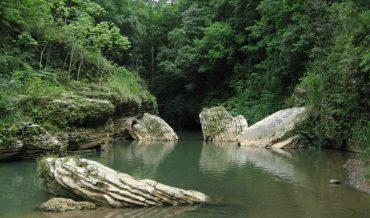 El Carso y las regiones en Puerto Rico